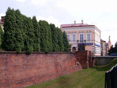 Cegła Gotycka Duża 33x15x8,5cm