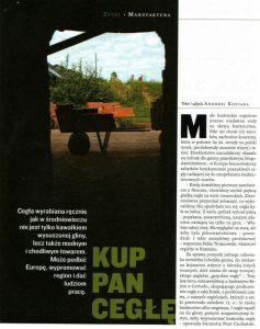 Gazeta artykuł ozon 2005 1 produkcja cegieł ręcznie formowanych do rekonstrukcji zabytków