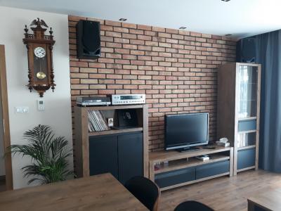 Retro brick in the living manufacture bricks